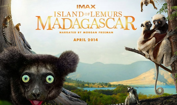 lemurs-madagascar-soundtrack
