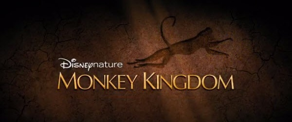 disneynature-monkey-kingdom